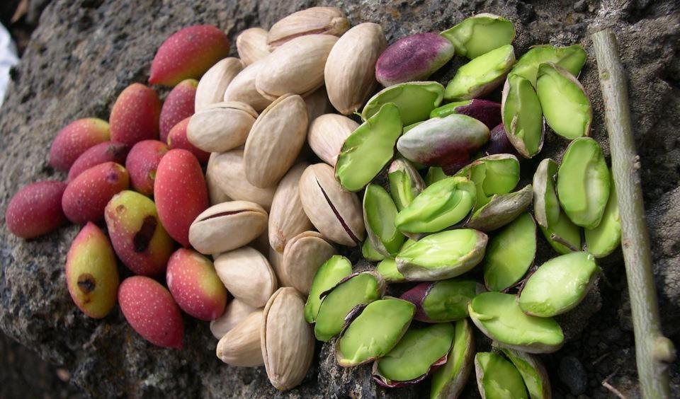 Орехи в традиционных кухнях мира, часть 2