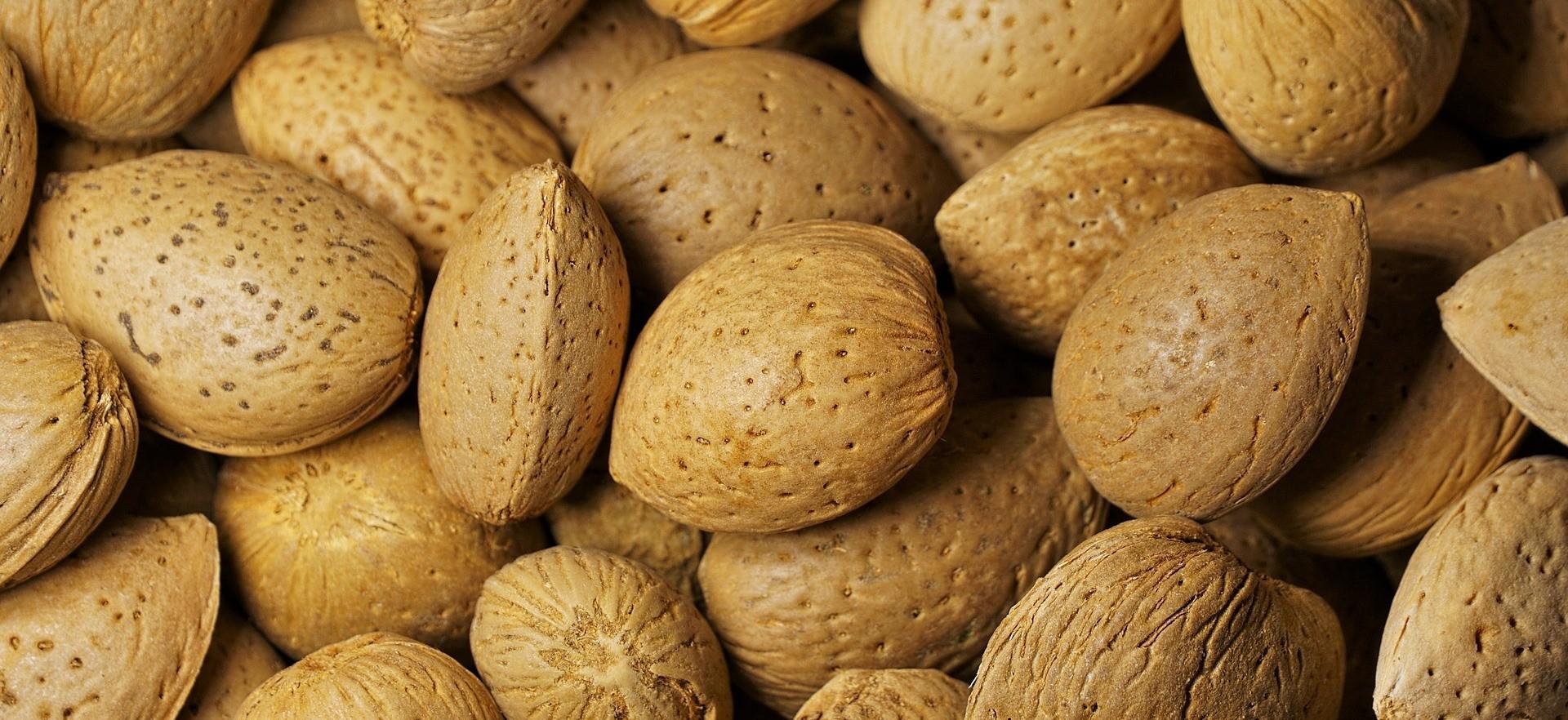 """Регулярное употребление миндаля помогает выведению """"плохого"""" холестерина из организма человека"""